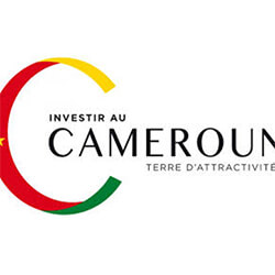 investir_au_cameroun_-_logo1